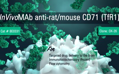 Bio X Cell New Product – InVivoMAb anti-rat/mouse CD71 (TfR1)